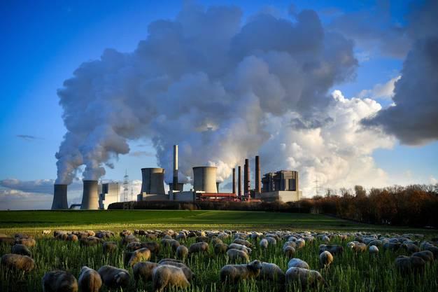 Dampf kommt aus dem mit Braunkohle betriebenen Kraftwerk Neurath in Bergheim (D).