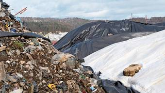 Jahrzehntelang war er unter der Erde. Jetzt ist der Abfall, der bis 1972 im «Müsli» entsorgt wurde, zu sehen.