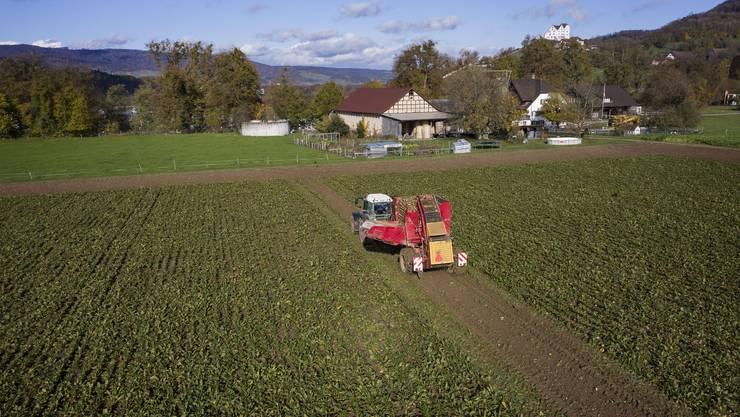Selbständige Landwirte sind bei den Familienzulagen besser gestellt.