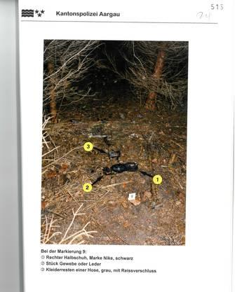 Ausriss aus dem Rapport der Kantonspolizei Aargau. Das Foto zeigt die Fundstelle. Knochen, Stofffetzen und ein Schuh lagen über mehrere Quadratmeter verteilt. Tiere müssen den Leichnam über die Zeit verschleppt haben.