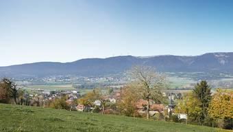 Ansicht des Windparks von Leuzigen her gesehen.