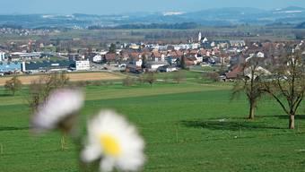 Boswil wäre, neben Muri, Sins und Merenschwand, eine der vier grossen Gemeinden im oberen Freiamt gewesen.