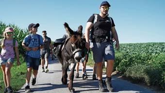 Die Kinder der Jugi Mühlethal wandern mit Moderator Christian Bisang und dem beliebten Esel Speedy.