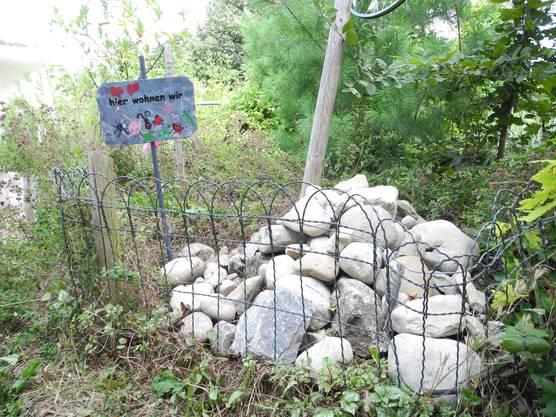 Der Steinhaufen bietet ein Zuhause für Insekten und Eidechsen.