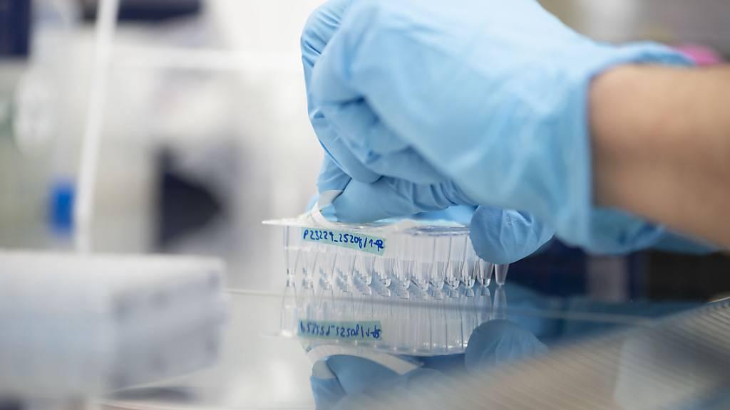 Ein Labormitarbeiter bereitet Sars-CoV-2-Proben zur Genomsequenzierung vor: Allein im August wurden schweizweit mehr als 5600 Sequenzen analysiert.