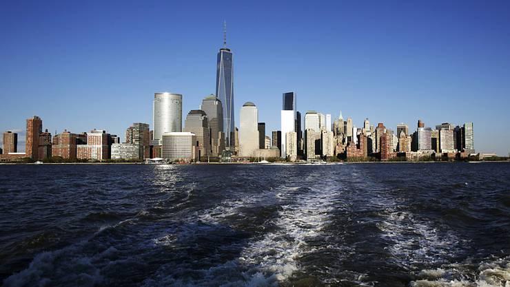 Mit einer einzigen Wasserprobe und DNA-Tests konnten Forscher bestimmen, welche Fische im Hudson River bei New York leben. (Symbolbild)