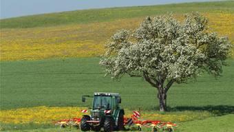 Mit den Landschaftsqualitätsbeiträgen werden Leistungen abgegolten, mit denen die Landwirte für den Erhalt, die Förderung und die Weiterentwicklung von attraktiven Landschaften sorgen.wal/Archiv az