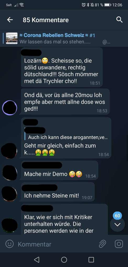 Im Chat der Corona Rebellen Schweiz wird zu Demos aufgerufen.