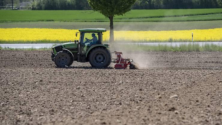 Bauern warten derzeit sehnsüchtig auf Niederschlag. (Symbolbild)