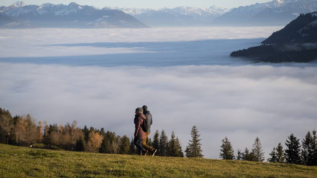 So wunderschön ist das Nebelmeer
