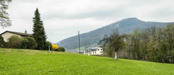 Das Grundstück liegt an der Nunningerstrasse in Grellingen.
