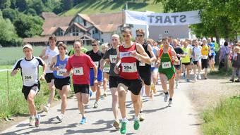 Alte und neue Sieger trafen sich in Lenzburg
