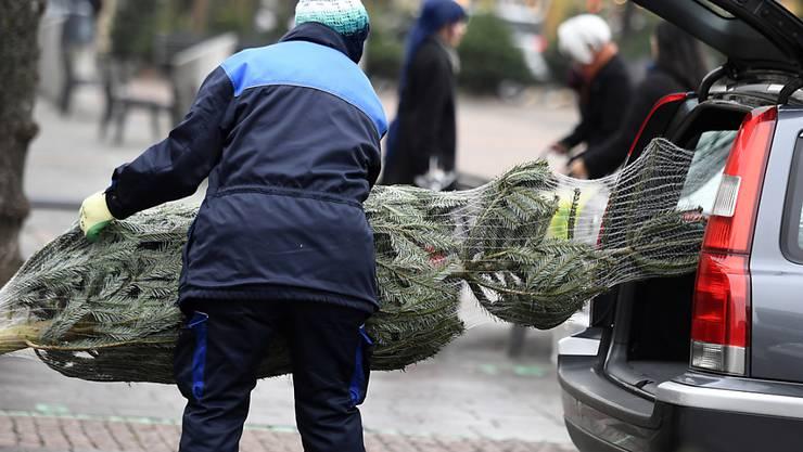 Rund 500'000 Schweizer Christbäume dürften in den nächsten Wochen verkauft werden. Trotz Frostschäden gibt es keinen Versorgungsengpass. (Archivbild)