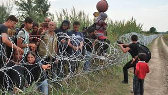 Syrische Flüchtlinge an der serbisch-ungarischen Grenze unweit der ungarischen Gemeinde Röszke im Sommer 2015. (Archivbild)
