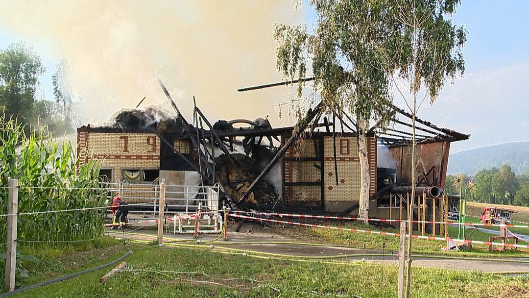 Triengen LU: Scheune durch Brand komplett zerstört