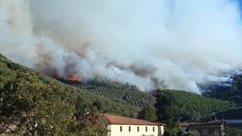 Der Wald brennt in Calci nahe Pisa.