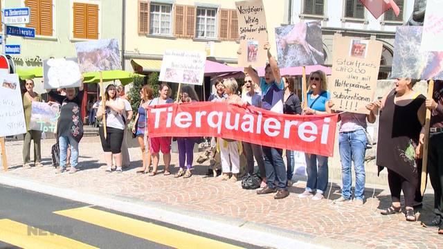 Thurgauer Horrorhof kein Einzelfall?