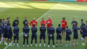 Die Schweizer Nationalmannschaft und Trainer Vladimir Petkovic stehen in Genf gegen Irland mächtig unter Druck