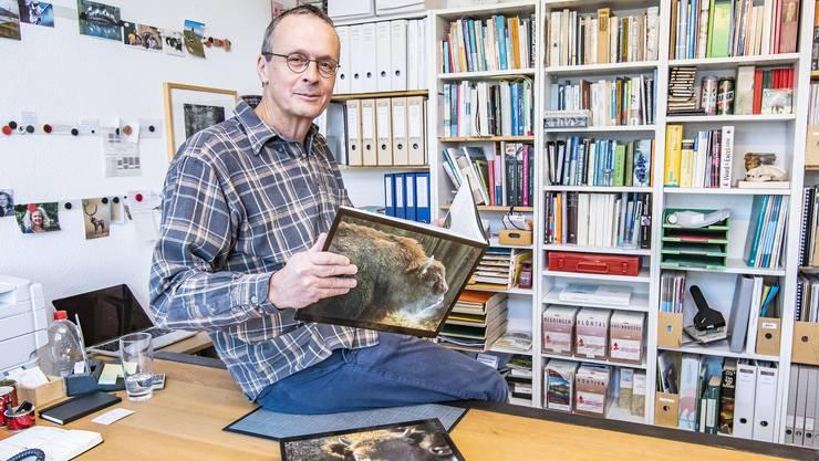 Er reist immer wieder zum Fachaustausch ins Ausland, er studiert Berichte und Bücher, er weibelt von Behörde zu Behörde: Das Leben des Darius Weber wird derzeit vom Wisent dominiert.