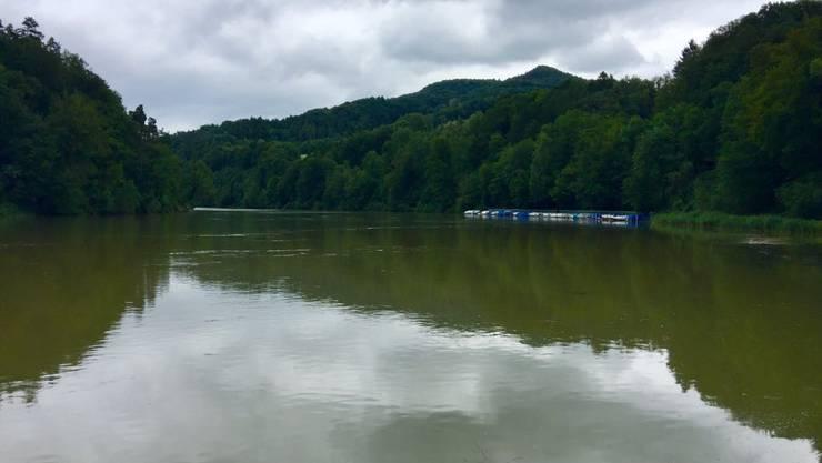 Die Tössegg in der Nähe von Freienstein ist ein beliebter Bade- und Grillort.