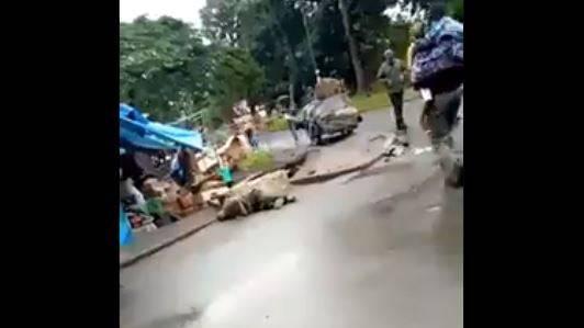 Wer auf Twitter mit #Tanzania und #Coronavirus sucht, findet Dutzende von Bildern und Videos, die Leichen zeigen, welche mitten auf den Strassen herumliegen.