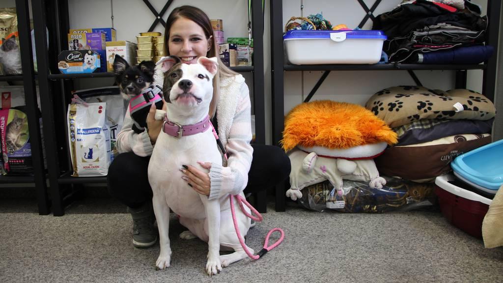Hilfe für Mensch und Tier ohne Geld
