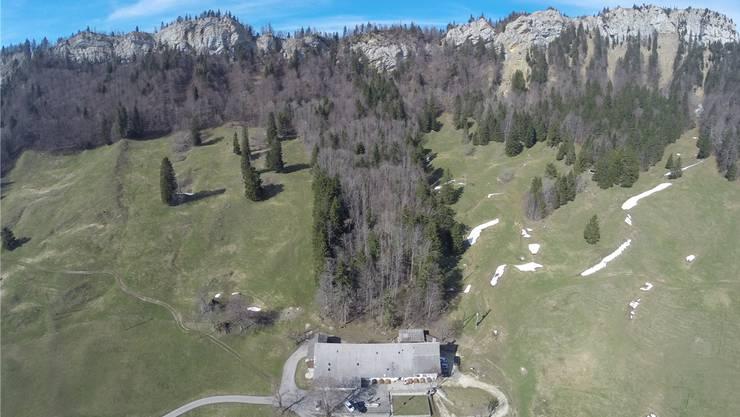 Idyllisch gelegen: das Bergrestaurant Oberes Brüggli. Bild: zvg