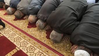 Muslime beten in der Moschee im Haus der Religionen am Europaplatz in Bern. Das Gedränge täuscht: Muslime in der Schweiz praktizieren ihre Religion gemäss einer Befragung des Bundesamts für Statistik zum Grossteil nur sporadisch. (Archivbild)