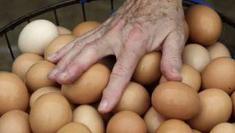 Ein Räuber hat sich mit einem rohen Ei bewaffnet (Symbolbild)