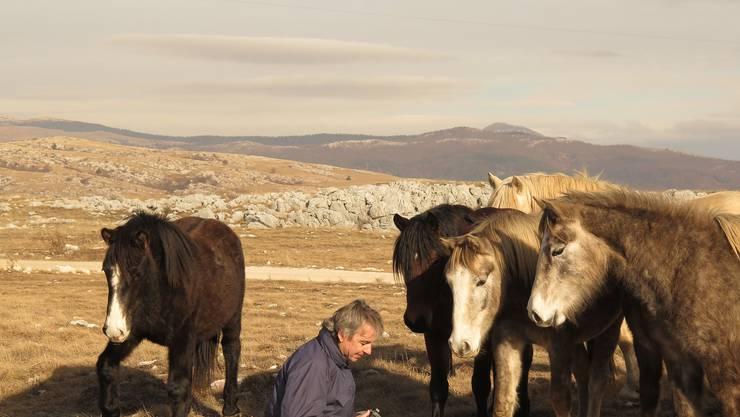 Fotograf Markus Saxer liebt die Arbeit mit frei lebenden Pferden.