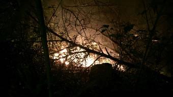 Am Sonntagabend brannte der Wald unterhalb der Ruine Wartenburg.