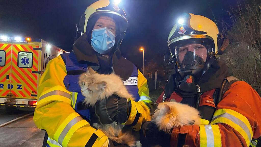 Ein Atemschutztrupp der Feuerwehr Cham hat drei Katzen aus einer brennenden Wohnung gerettet.