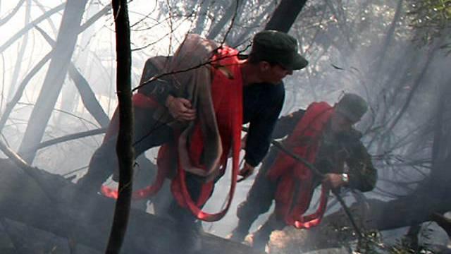 Kolumbien von Waldbränden heimgesucht (Archiv)