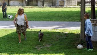 Begegnungen zwischen Hunden und spielenden Kindern sind nicht immer konfliktfrei.