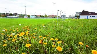 Fussballfeld in Kestenholz: Mehrheitlich spielt hier die Juniorenabteilung. Wie lange noch?