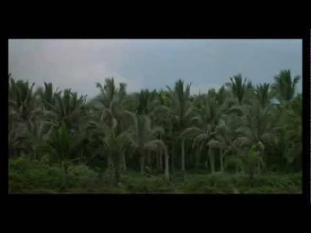 """Anfangssequenz von """"Apocalypse Now"""" (1979)"""