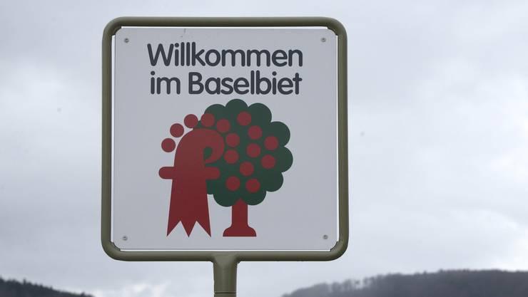 Die Präsidentinnen und Präsidenten der fünf Baselbieter Ortsparlamente wurden gewählt.