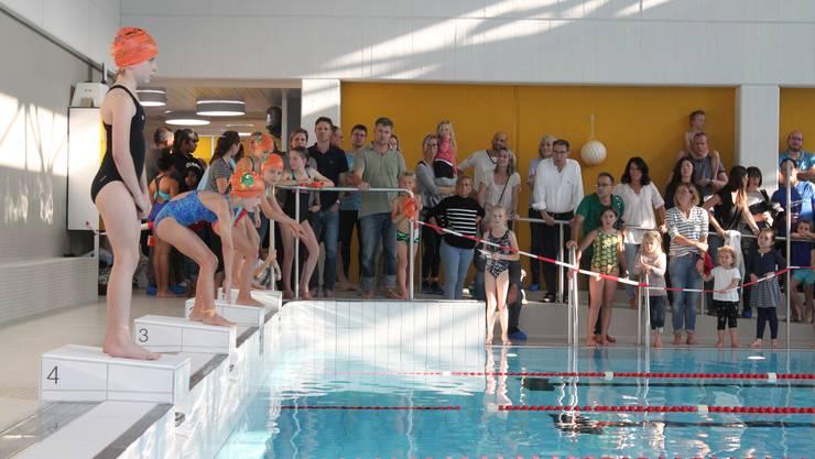 Wer beim Schwimmwettbewerb Limmattaler Fisch zu früh ins Wasser sprang, musste fünf Sekunden Zeitaufschlag in Kauf nehmen.