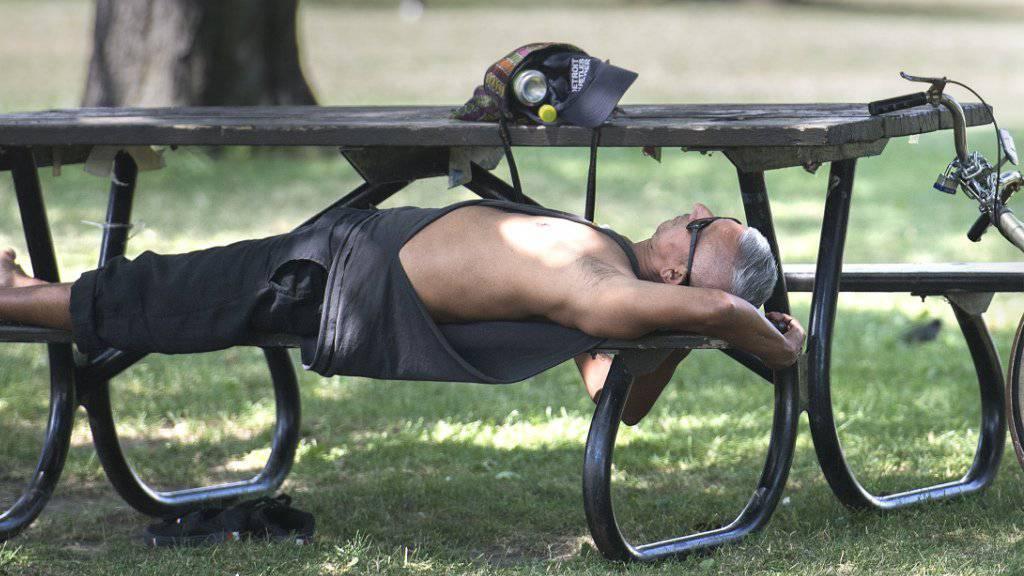 Hitzewelle im Osten Kanadas: Ein Mann ruht sich im Schatten eines Baumes in einem Park in Montreal aus.