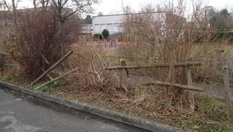 Eine Autofahrerin prallte am Mitwoch mit ihrem Auto in Nussbaumen in einen Gartenzaun und fuhr davon.