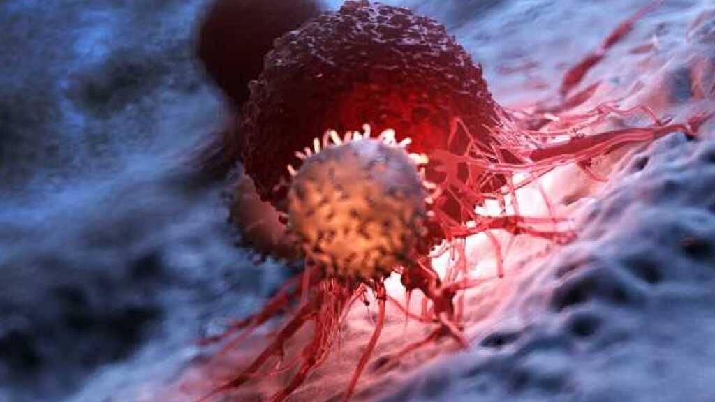 Individualisierte Krebstherapien dank Tumor Profiling in Griffweite