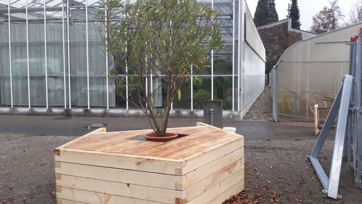 Grosse Pflanzentröge sollen die Stadt Winterthur verschönern.