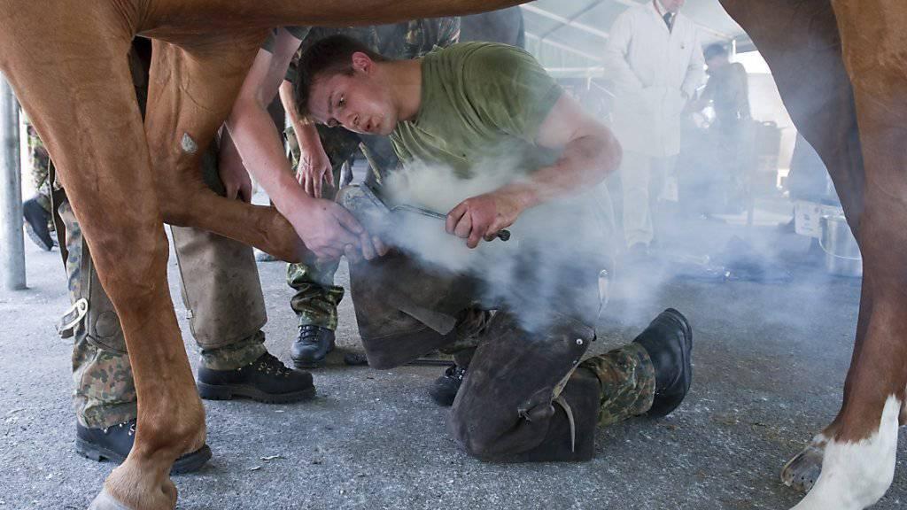 Armeepferde werden nicht mehr «gebrannt»