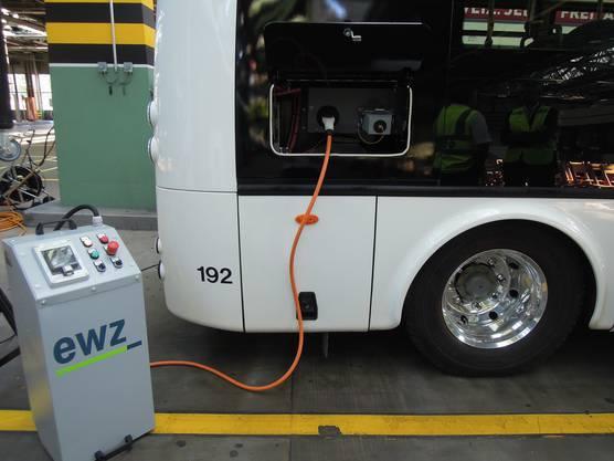 Die Ladezeit dauert acht Stunden. Genau so lange läuft der E-Bus dann mit Strom.