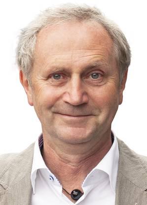 Hansjörg Wittwer, Grossrat Grüne