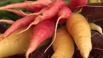 Über das Für und Wider von Bio-Lebensmitteln wird schon länger gestritten.