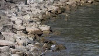 Die Pegel der meisten Schweizer Gewässer sind gestiegen (Symbolbild)