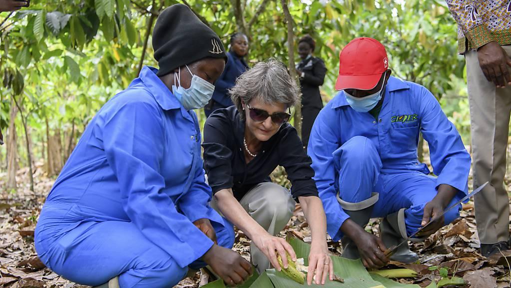 Bundesrätin Simonetta Sommaruga hat in Ghana Kakao-Bäuerinnen und -Bauern getroffen.