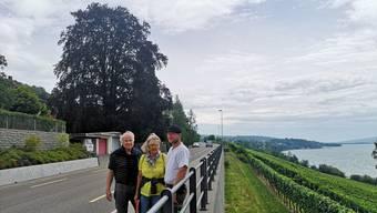 Christian Siegrist, Pia Kündig und Hans Peter Lindenmann (v.r.) vor der Blutbuche, die an der Kantonsstrasse steht.