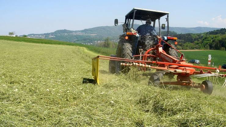 Besonders die Milchproduzenten haben in der Schweiz einen schweren Stand. Die Bio-Produzenten unter ihnen stehen besser da. Ein Birmensdorfer Bauer beim Heuen. Archiv/MKE